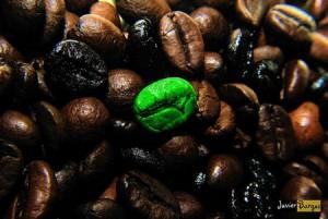 Pouvoir antioxydant puissant du café